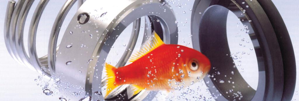 Proces_fisk